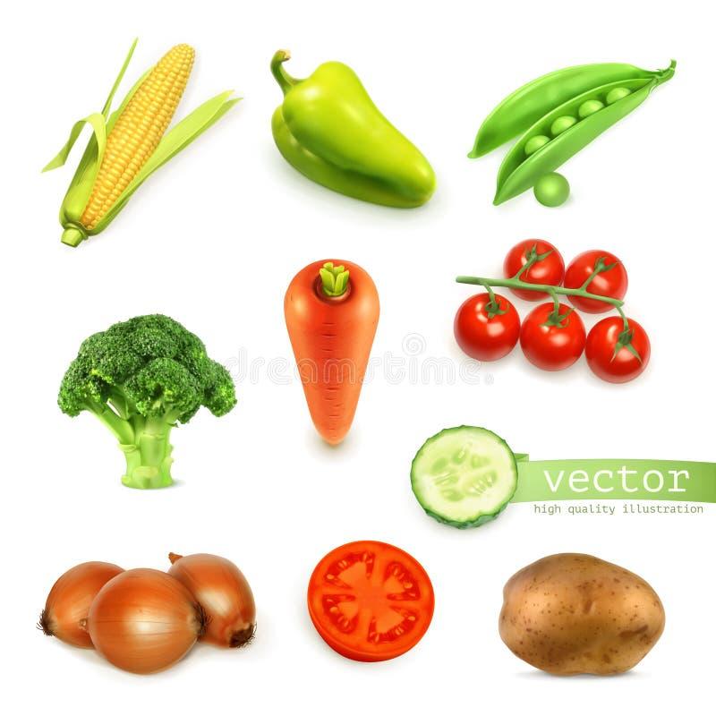 Set z warzywami ilustracyjnymi ilustracja wektor