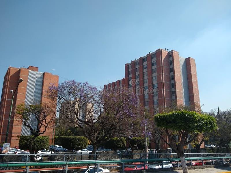Set zespoły mieszkaniowi w Meksyk fotografia royalty free