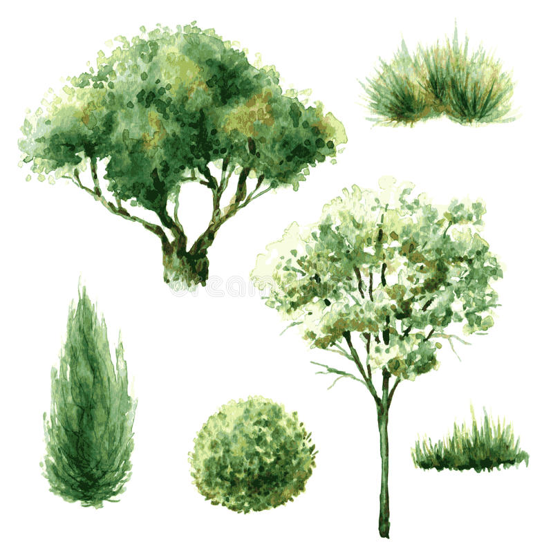 Set zieleni drzewa i krzaki ilustracji