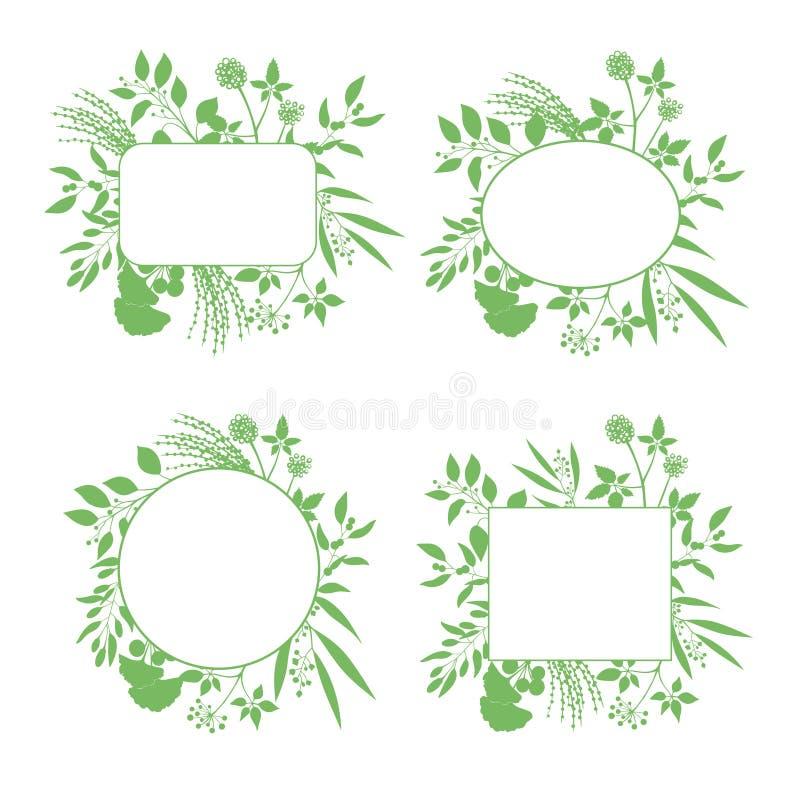 Set zielone round i kwadratowe wektorowe ramy ilustracji