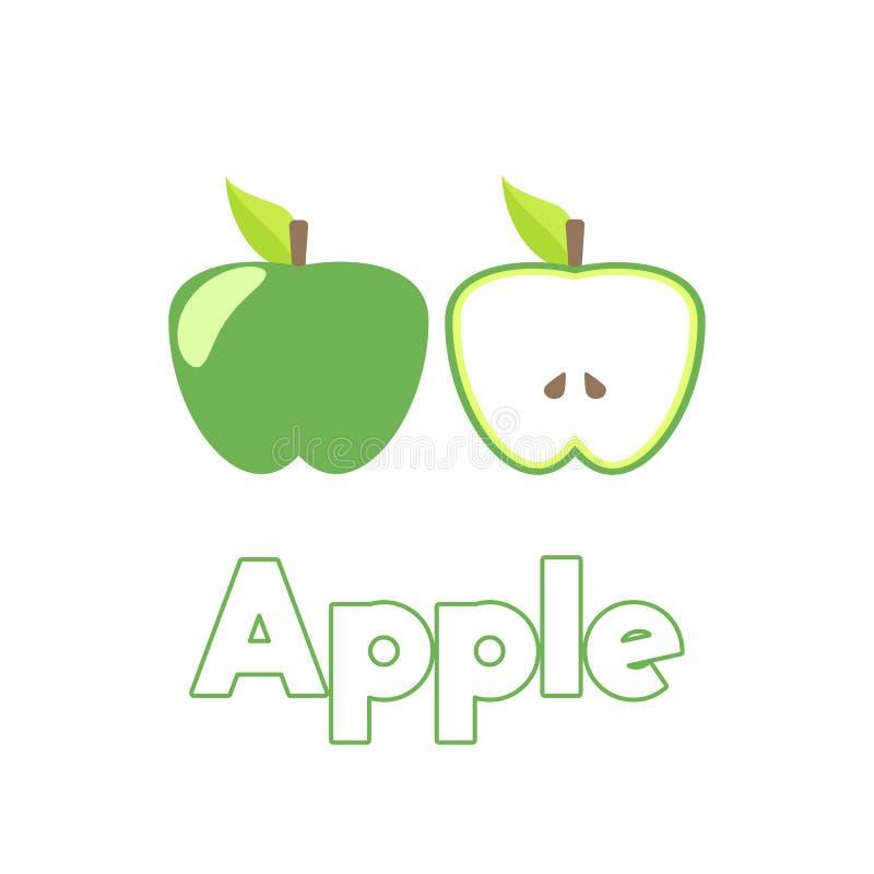 Set Zielony jab?ko z trzonem i li?ciem Element edukacji ilustracja zdrowe jedzenie wegetarianin ilustracja wektor