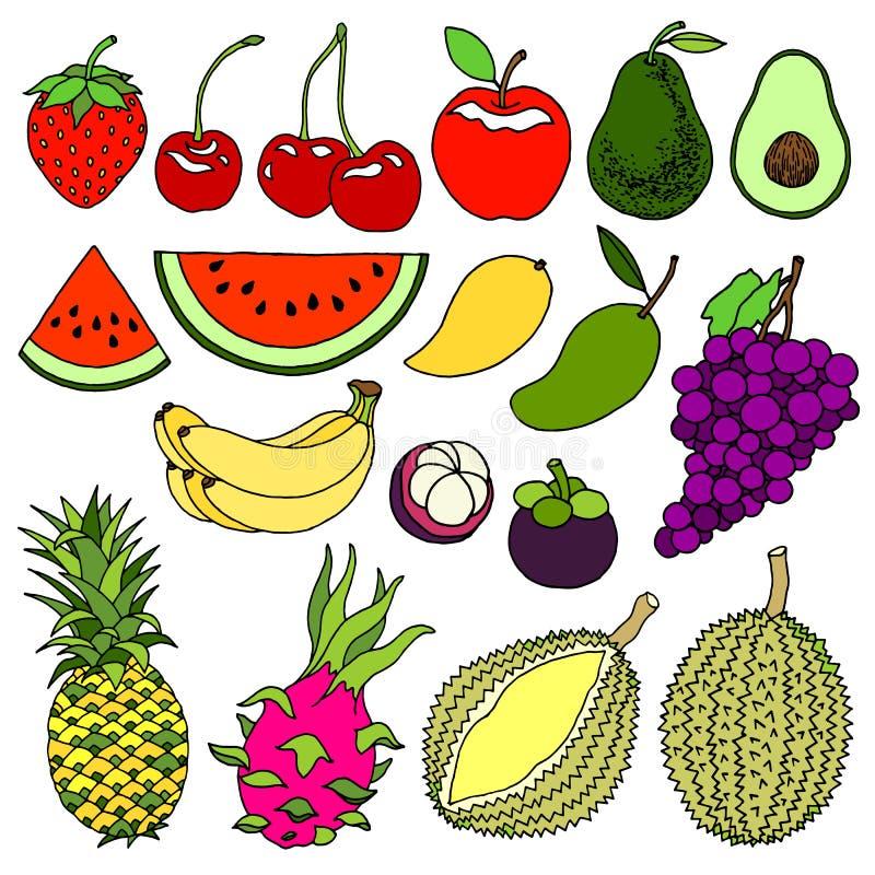 Set zimnej pogody i tropikalnych owoc projekta sztuki ręki słodki wyśmienicie wektorowy ilustracyjny rysunek royalty ilustracja