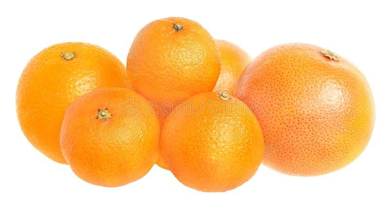Download Set Zitrusfrucht. stockfoto. Bild von reif, farbe, süß - 12202708