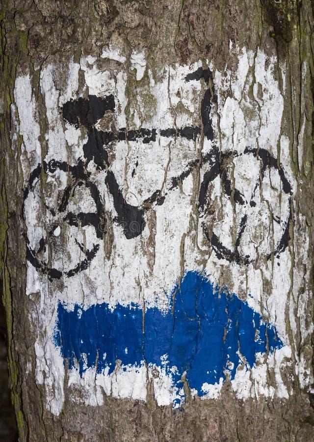 Seta azul pintada na casca de árvore imagens de stock
