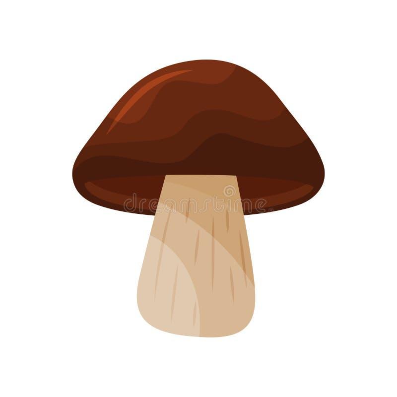 Seta del engrasador con el casquillo marrón grande y el tallo beige Tipo de hongo comestible cocinar el ingrediente Icono plano d ilustración del vector