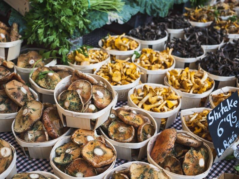 Seta en venta orgánica del producto agrícola de la parada de las verduras frescas de la cesta en viaje gastrónomo del mercado de  fotos de archivo