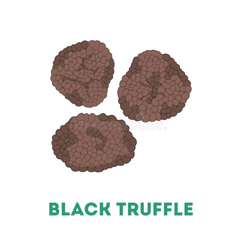 Seta negra de la trufa Ingrediente delicioso para cocinar libre illustration