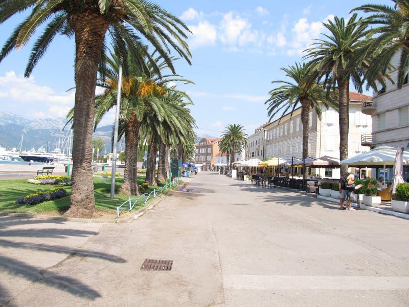 Setalisteseizoen, naast het strand in Tivat, Montenegro royalty-vrije stock foto's