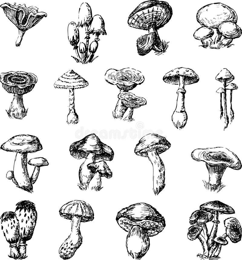 Setas libre illustration