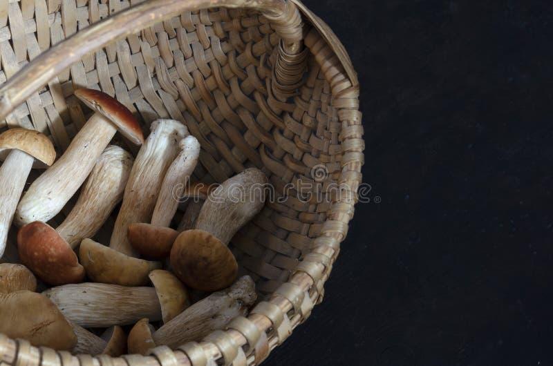 Setas de Porcini en una cesta en un fondo negro fotos de archivo