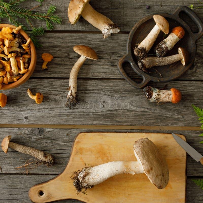 Setas en viejo fondo de madera Tarjeta el oto?o o verano Boleto de la cosecha del bosque, mízcalos, hojas, bayas Endecha plana fotografía de archivo