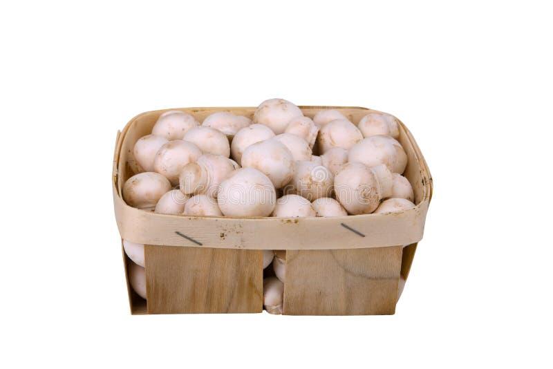 Setas frescas en una caja de madera en blanco fotografía de archivo libre de regalías