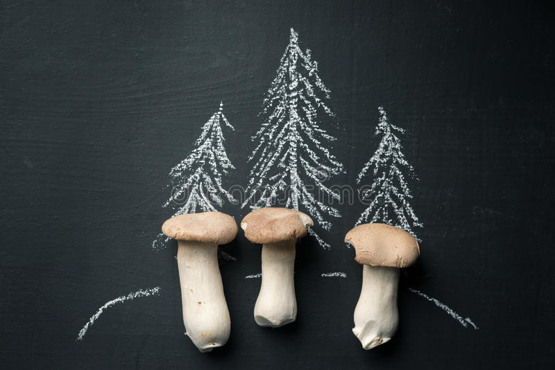 Setas que crecen en bosque imagen de archivo