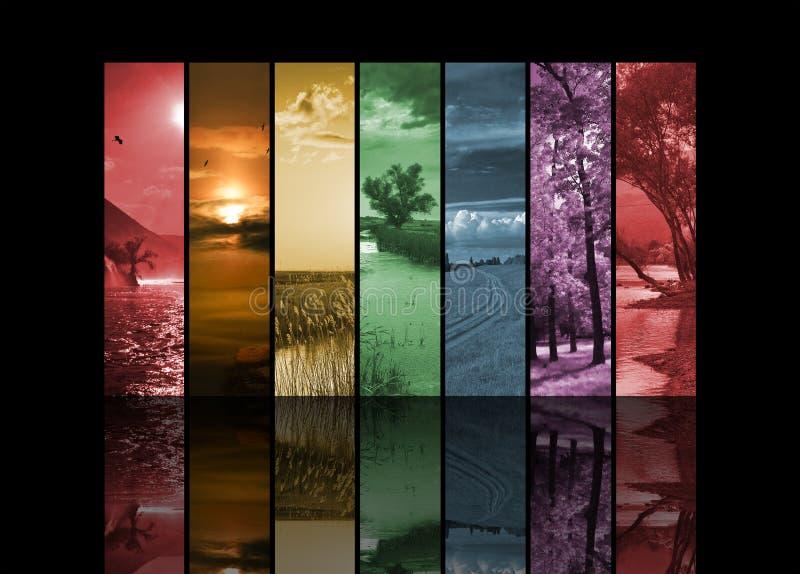 Sete fotos verticais da paisagem fotos de stock