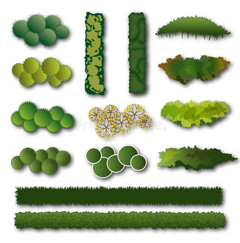 Setos y sistema del arbusto para el diseño del paisaje ilustración del vector
