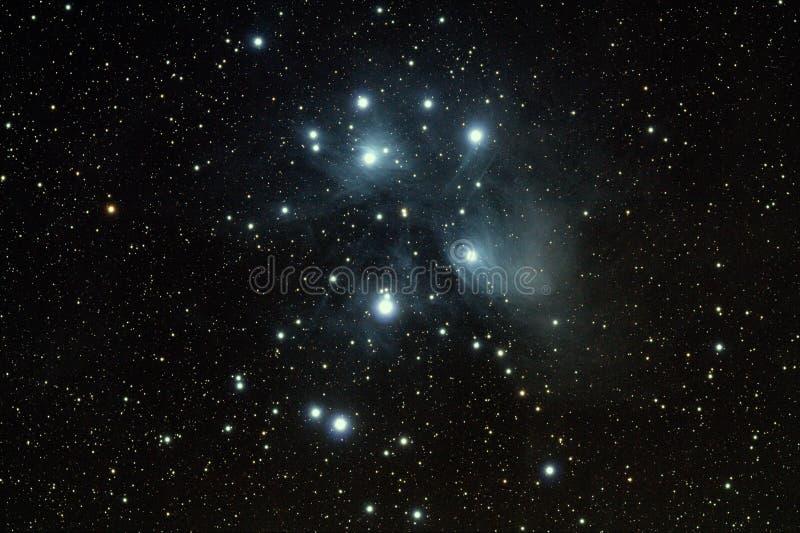 Sette Pleiads delle sorelle fotografia stock