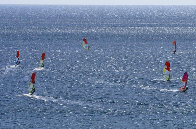 Sette windsurfers stanno guidando sulla superficie del mar Mediterraneo bello dell'abbagliamento fotografia stock