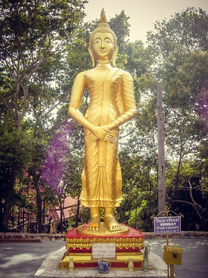 Settimana dorata della statua di culto in Tailandia turismo domenica fotografia stock