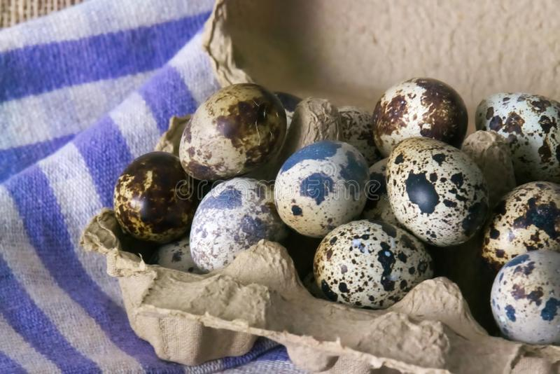A large carton of several quail eggs, on a cloth background. royalty free stock images