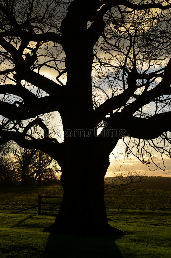 Setting sun over the English landscape. royalty free stock images