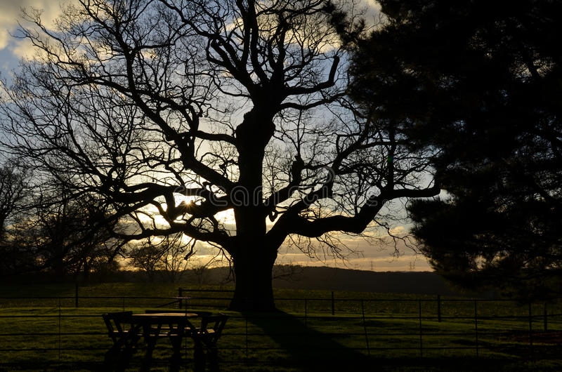 Setting sun over the English landscape. royalty free stock photography