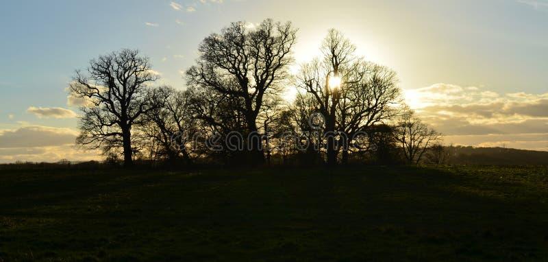 Setting sun over the English landscape. stock photos