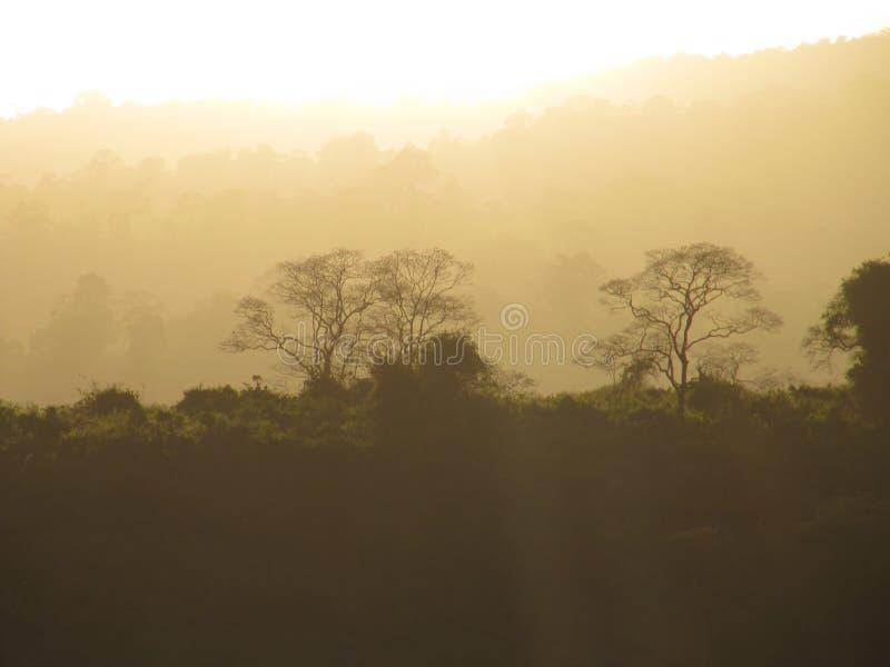 Sunset over Oldeani on the slopes of Ngorongoro,Tanzania royalty free stock photography
