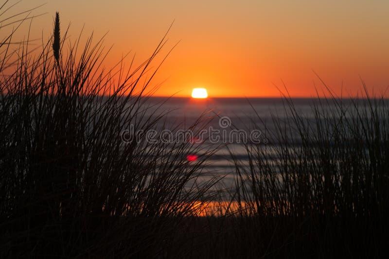 Setting sun over the ocean royalty free stock photos