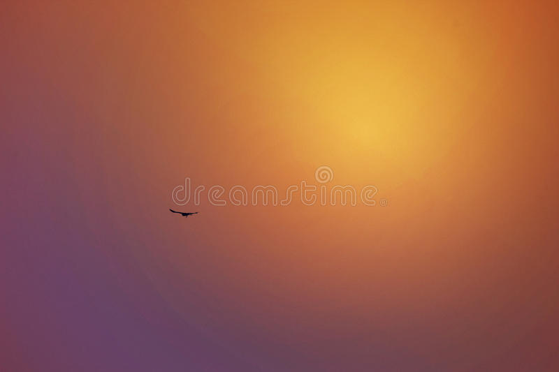 Setting Sun Reflection in the Sky,Dubai,UAE on 21 July 2017 royalty free stock images