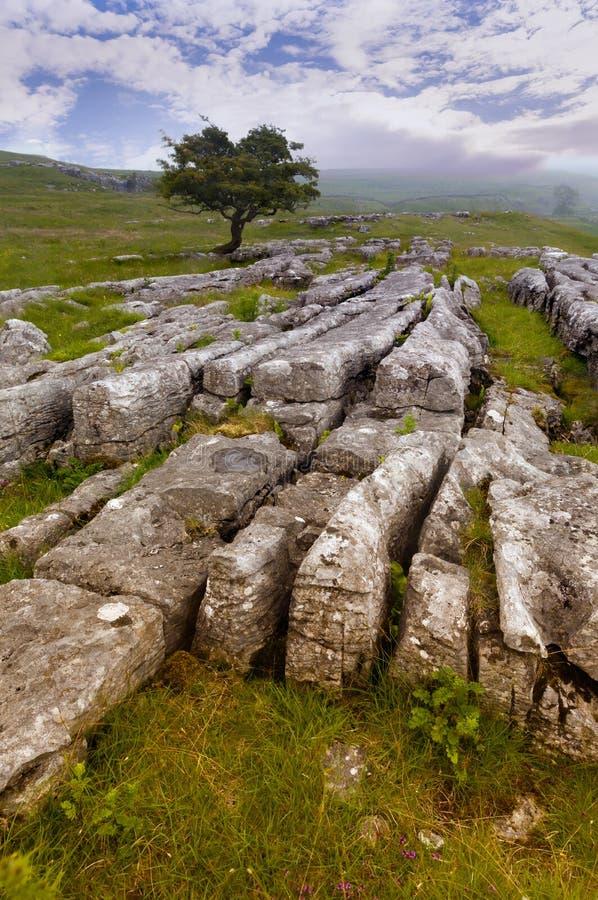 Settle cercano del pavimento de piedra caliza, valles de Yorkshire foto de archivo