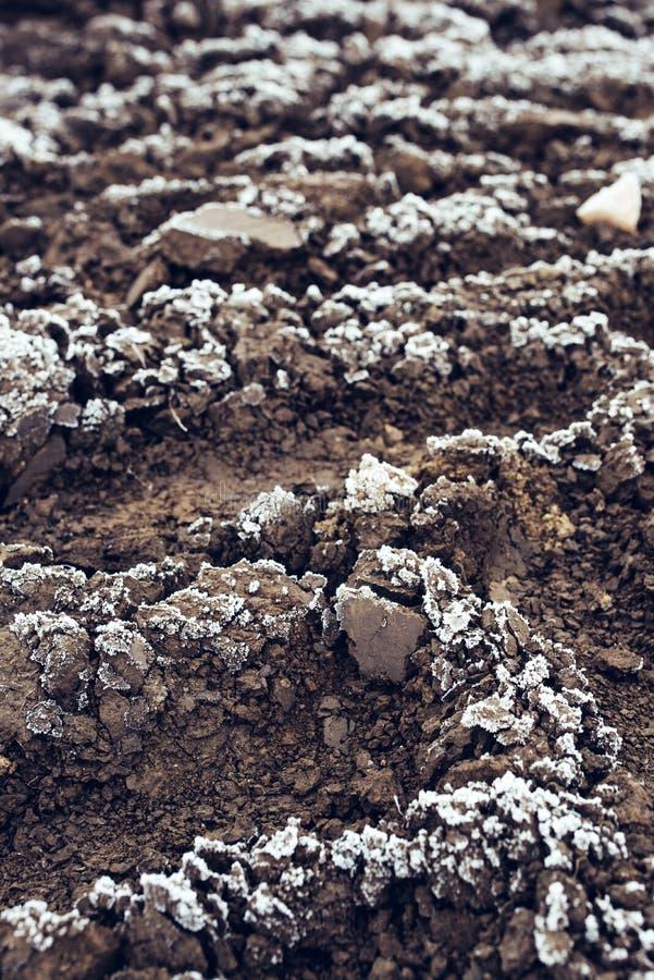Settore agricolo arato congelato coperto di gelo immagine stock libera da diritti