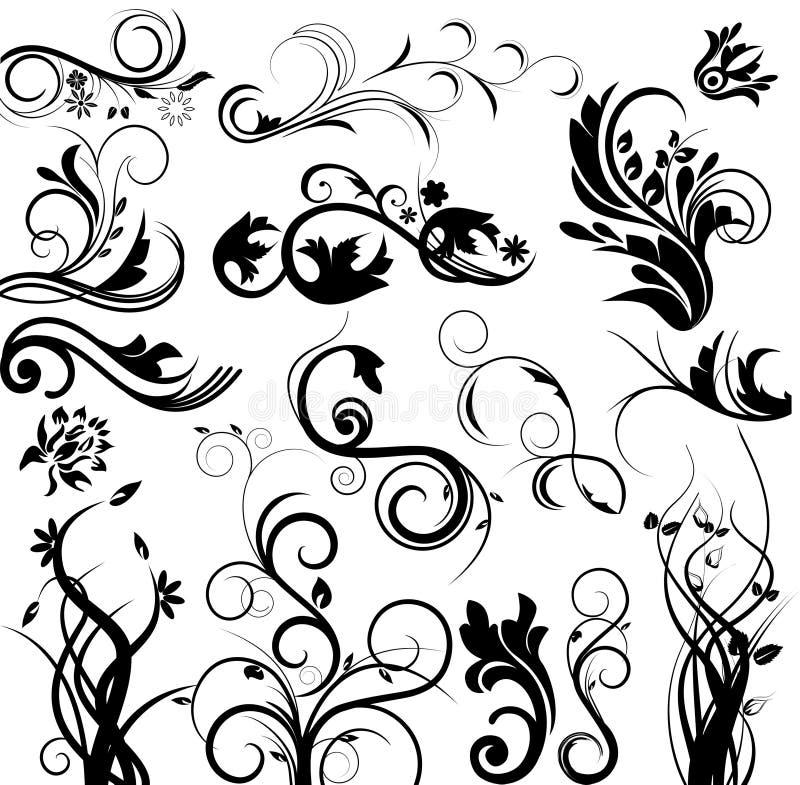 setu kwiecisty wektor ilustracji