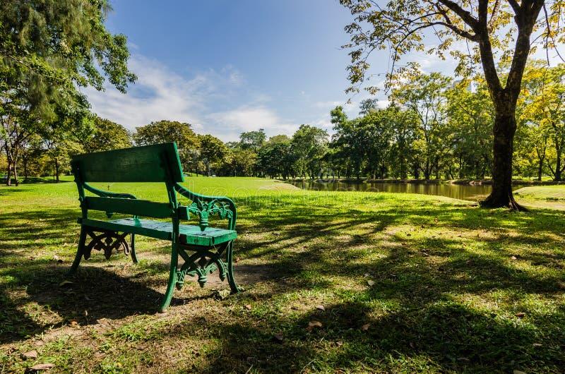 Setzen Sie öffentlich Park mit Schatten des grünen Baums auf die Bank stockbild