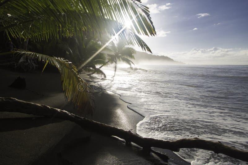 Setzen Sie bei Sonnenaufgang, Nationalpark Corcovado, Costa Rica auf den Strand stockfotos