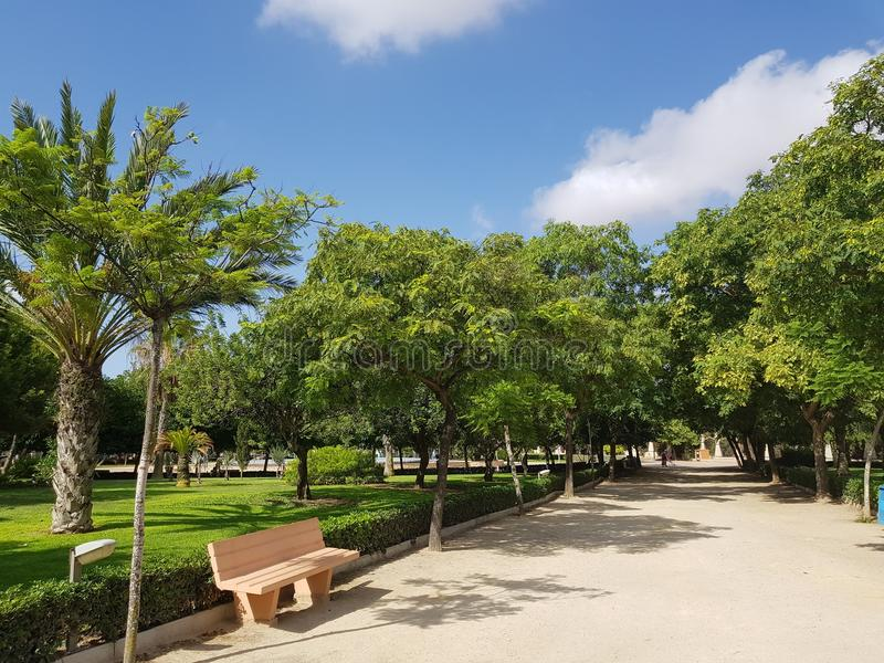 Setzen Sie im sonnigen Stadtpark mit grünem Gras, Bäumen und Weg auf die Bank stockbilder