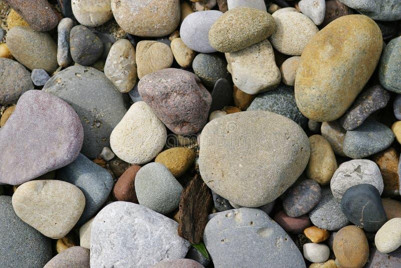 Setzen Sie Kiesel auf den Strand lizenzfreies stockbild
