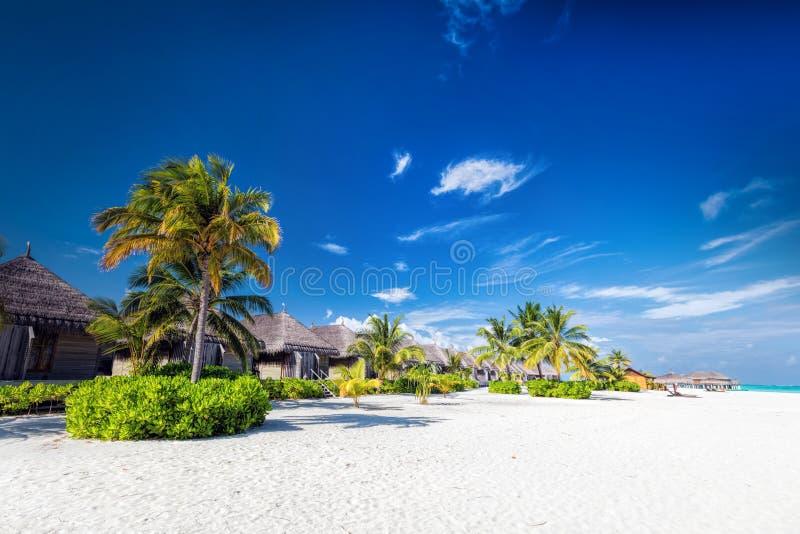 Setzen Sie mit Kokosnusspalmen und -landhäusern auf einem kleinen Inselresort in Malediven auf den Strand stockbilder
