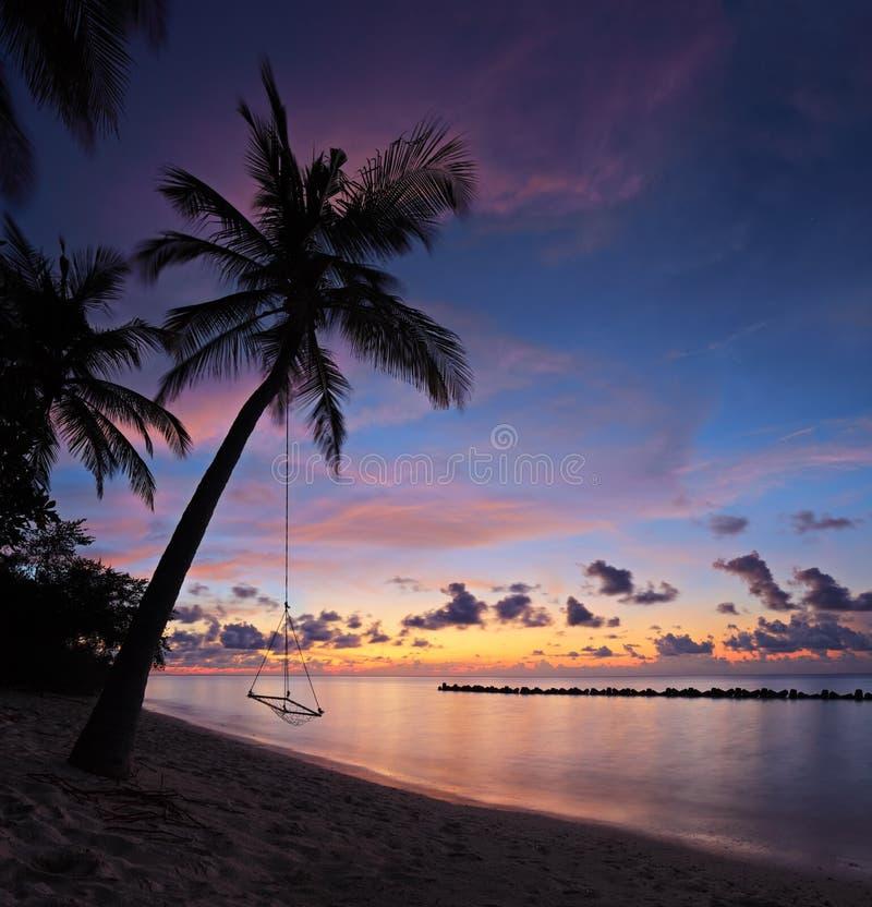 Setzen Sie mit Palmen am Sonnenuntergang, Maldives-Insel auf den Strand lizenzfreie stockfotos