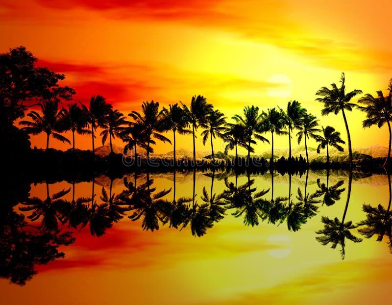 Setzen Sie Sonnenuntergang oder Sonnenaufgang mit tropischen Palmen auf den Strand lizenzfreie stockbilder