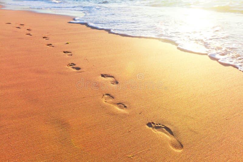 Setzen Sie, Welle und Schritte zur Sonnenuntergangzeit auf den Strand stockbild