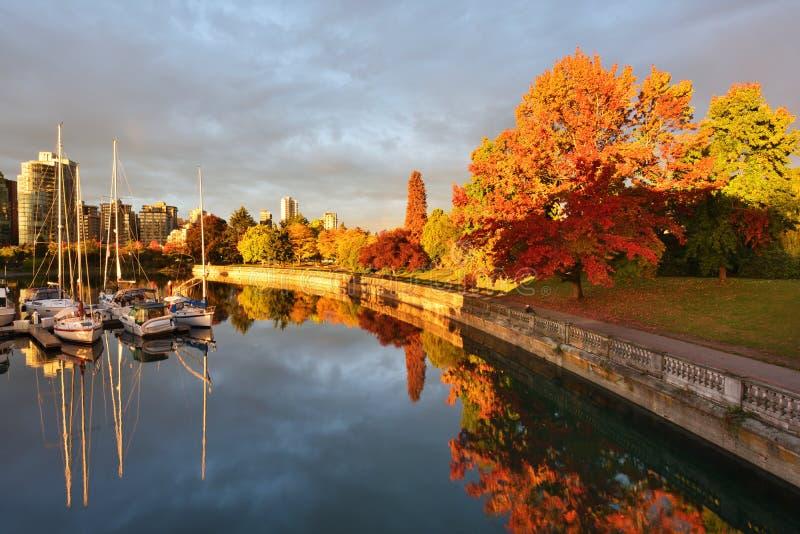 Seul Autumn Colors la promenade de mer en Stanley Park, Vancouver photographie stock