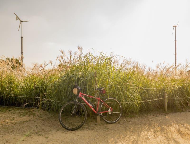 SEUL, COREA DEL SUR - 22 DE SEPTIEMBRE DE 2017: Bicicleta parqueada en el parque de Hanuel fotografía de archivo libre de regalías