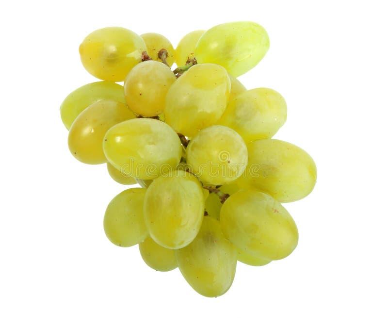 Seul groupe de raisin blanc images libres de droits