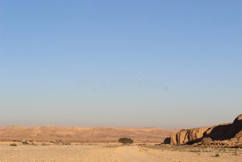 Seul paysage la traînée de Negev en Israël image libre de droits