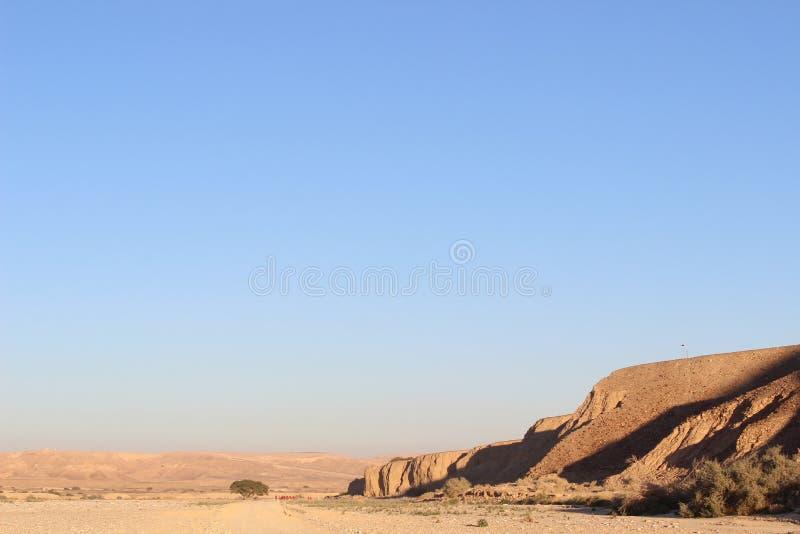 Seul paysage la traînée de Negev en Israël photo stock