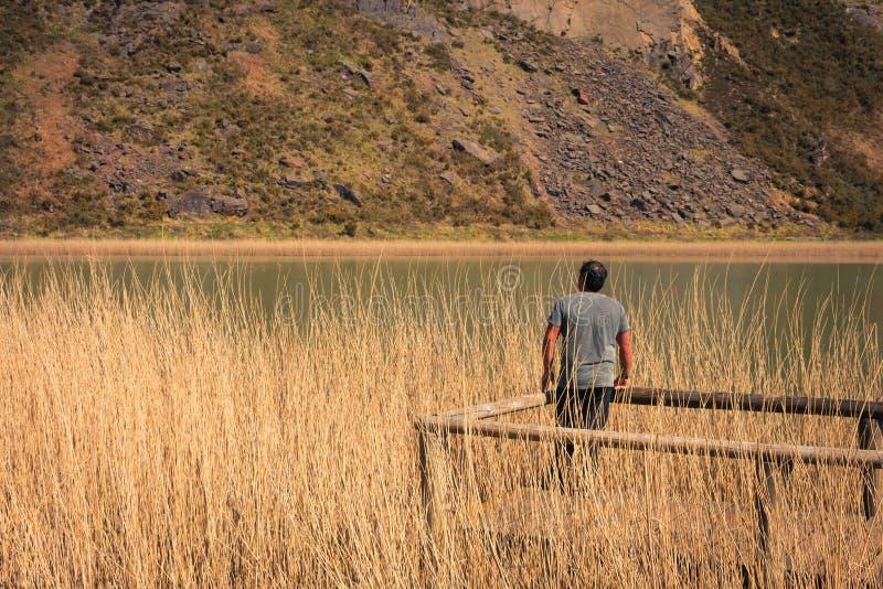 Seul un jeune homme sur un lac, portrait, arboleda de La, pays Basque photo stock