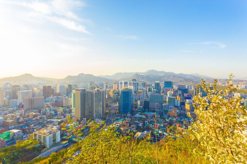 Seul widoku pejzażu miejskiego W centrum Wysocy budynki zdjęcia royalty free