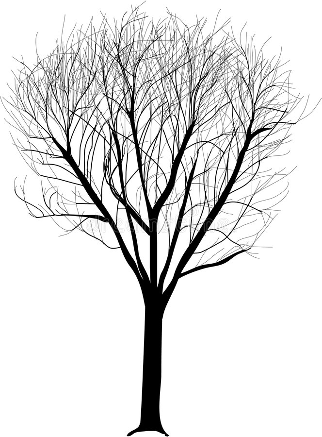 Seule illustration d'arbre illustration de vecteur