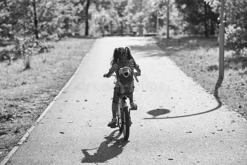 Seule petite fille montant un vélo en parc en été photos libres de droits