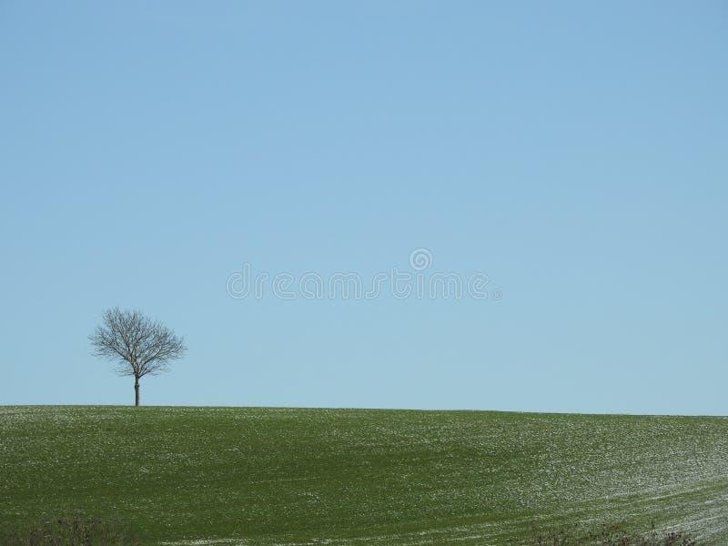 Download Seulement Au-dessus Des Nuages Photo stock - Image du campagne, congelé: 87705528